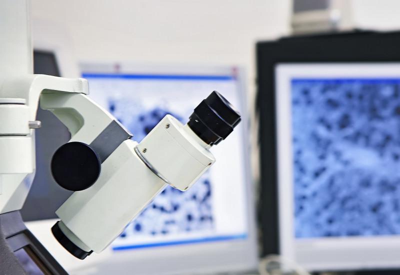 Mikroskop, das Mikroskopbild wird auf Computermonitore übertragen
