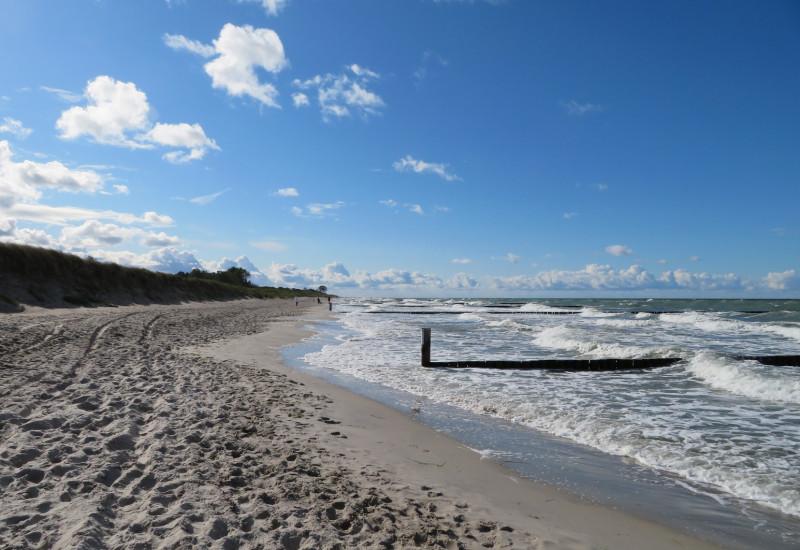 Ostseestrand mit Buhnen und blauem Himmel