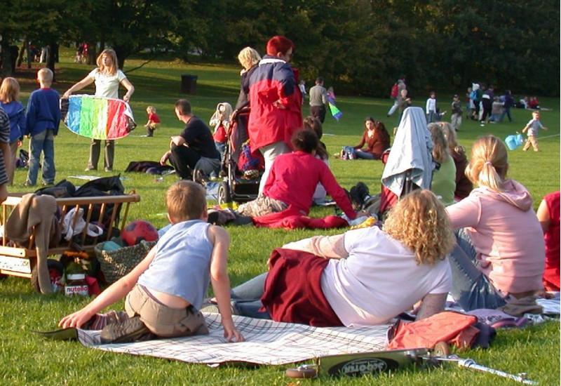 Familien im Park auf einer Liegewiese