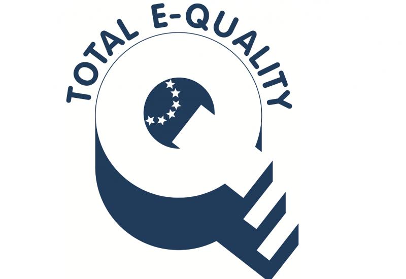 """Logo: ein großes Q, bei dem der Querstrich ein Treppchen zum Podest, dem Kreis des Q, ist; darüber der Schriftzug """"Total E-Quality"""""""