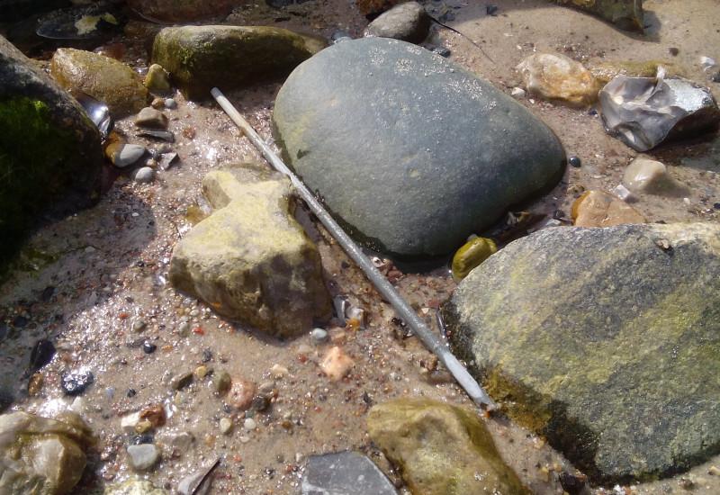 metallenes Stäbchen am Strand zwischen Steinen
