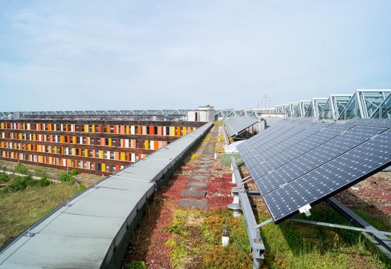 vierstöckiges Bürogebäude mit einer Fassade aus Holz und bunten Glaselementen; auf dem begrünten Dach steht eine Photovoltaik-Anlage