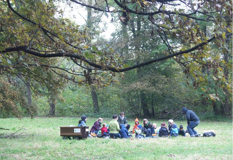 eine Kindergartengruppe sitzt auf einer Waldlichtung auf einer Wiese im Kreis
