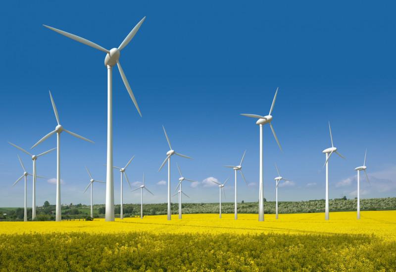 eine Fotomontage zeigt einen geplanten Windpark auf einem Rapsfeld, im Hintergrund Wald und blauer Himmel