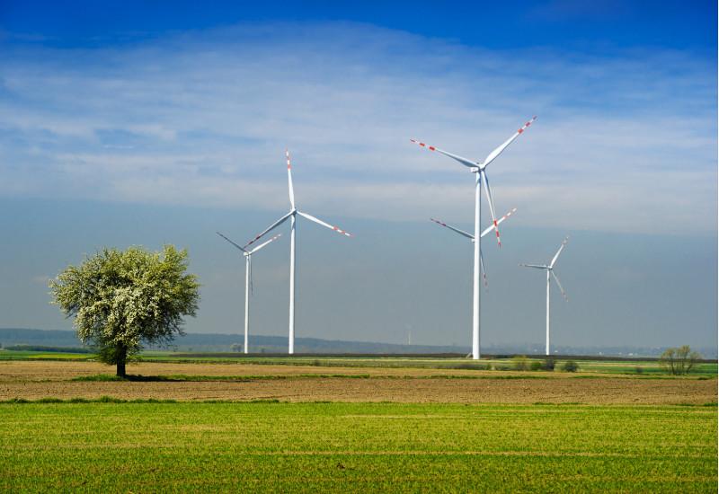 Windräder in einer weiten Feldlandschaft