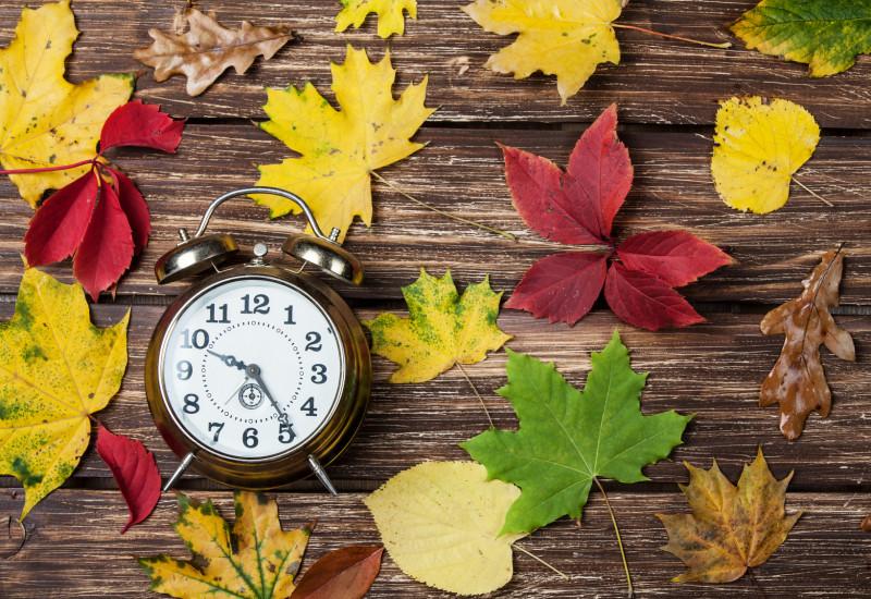 auf einem Holztisch liegen ein Wecker und bunte Herbstblätter von Wildem Wein, Ahorn, Linde und Eiche