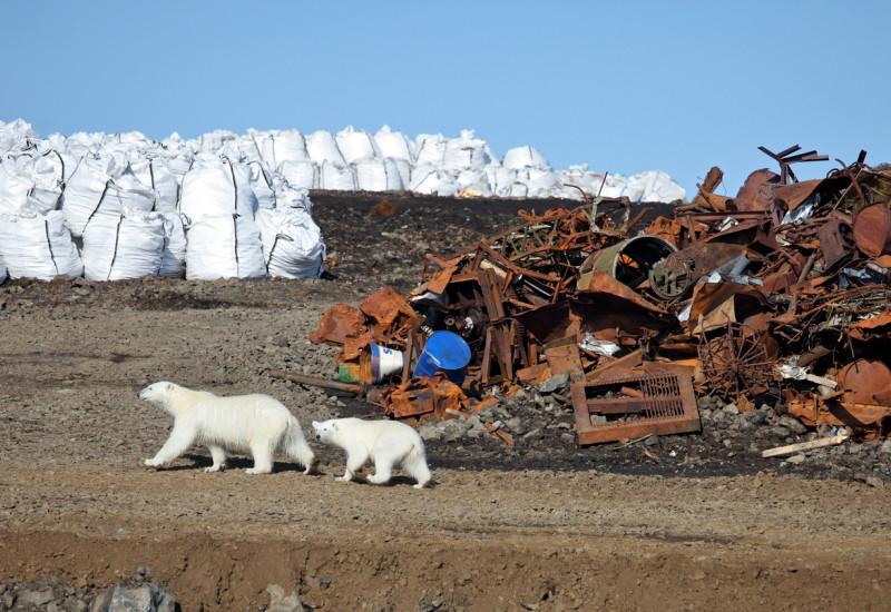 Verrosteter Schrott und andere Überbleibsel menschlicher Aktivitäten auf Franz-Josef-Land