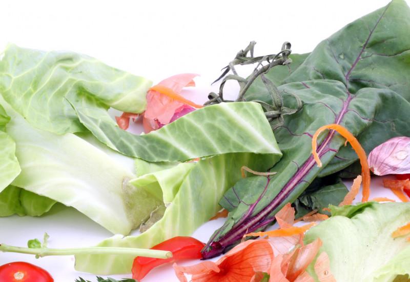 Blätter vom Salat, Tomatenreste, Möhrenschalen