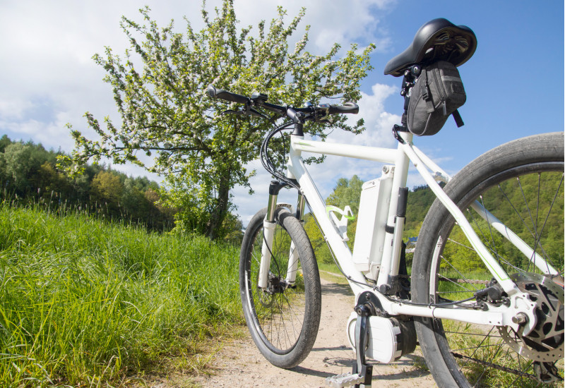 E-cycles on a field path