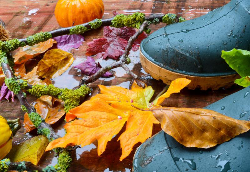 Gummistiefel im Regen und Herbstlaub