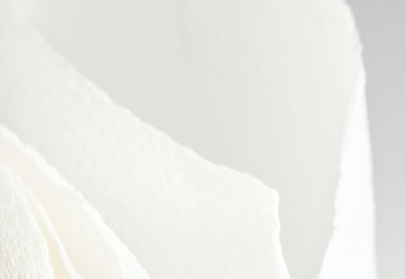 Rolle Hygienepapier
