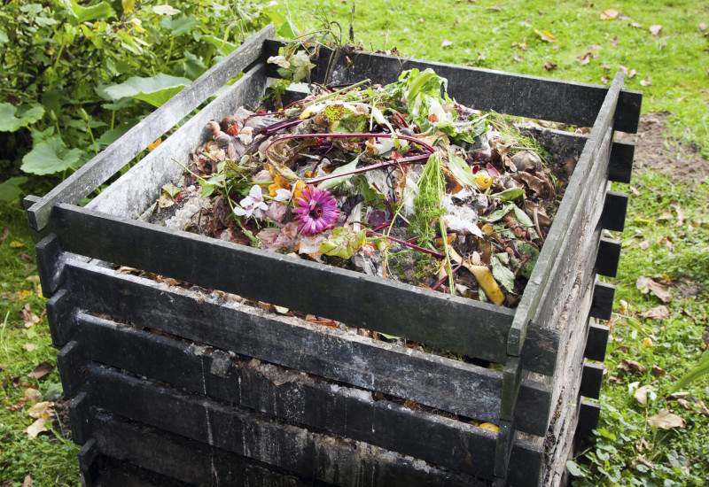 compost heap in a garden