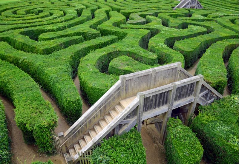 grünes Labyrinth mit Aussichtsplattform und Treppe aus Holz