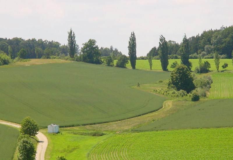 hügelige Landschaft Scheyern