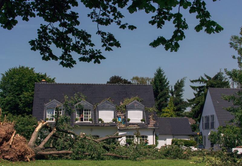 Sturmschäden an Gebäude mit abgebrochenen großen Laubbäumen davor.