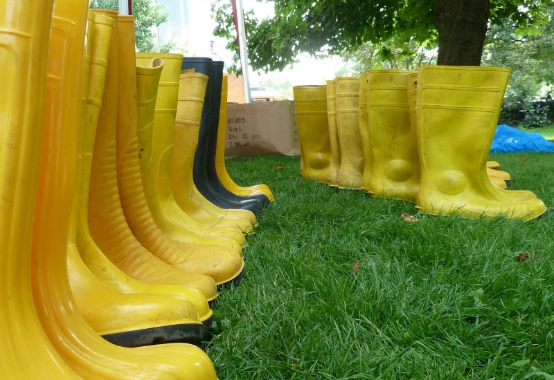 Aufgereihte gelbe Gummistiefel auf Rasenfläche.