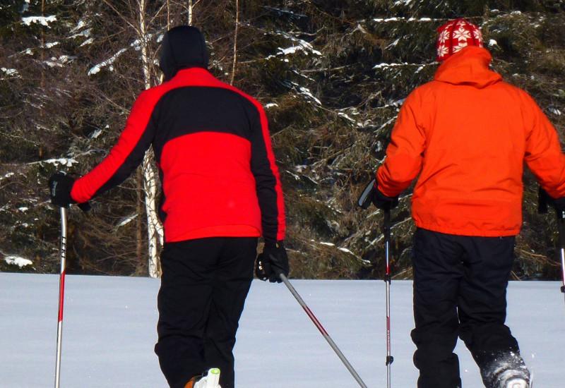 Rückenansicht von Schneeschuhwanderern.