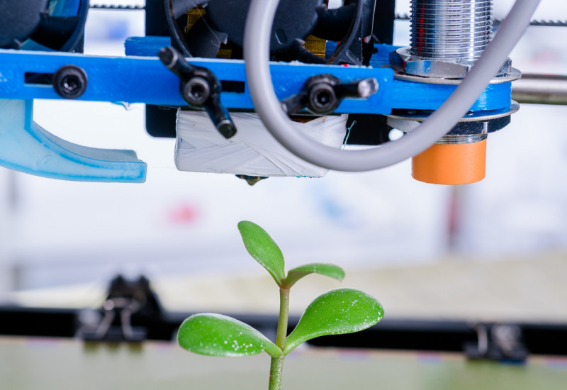 3D printer producing a little plastic tree