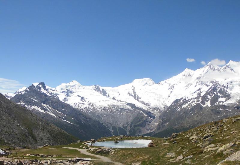 Eine Bergwiese in den Alpen.
