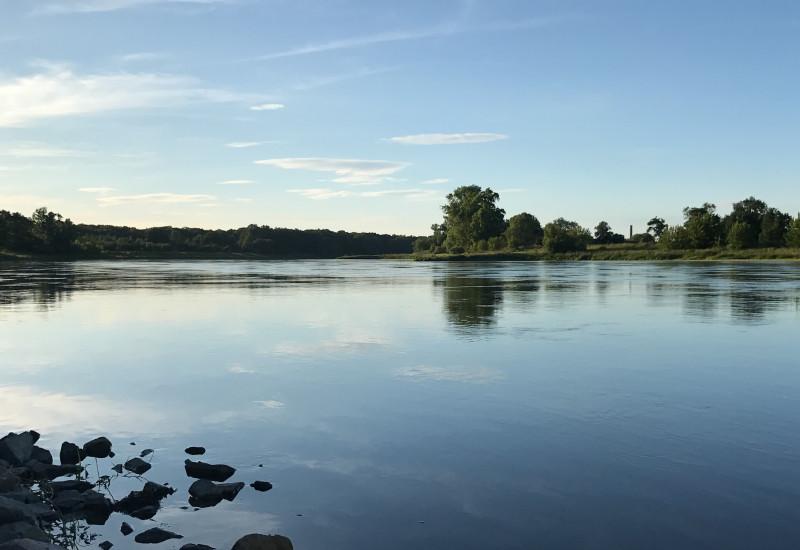 Die Elbe im Abendlicht mit blauem Himmel und grünen Bäumen.