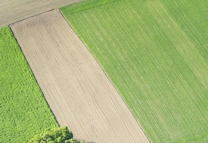Landschaft mit landwirtschaftlicher Nutzfläche, Naturwiese und Feldgehölzen.