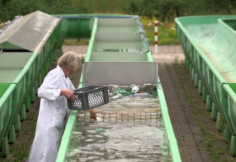 Ein grünes Rohr ist mit Wasser gefüllt, ein Mann mit einem weißen Kittel füllt Plastik ein.