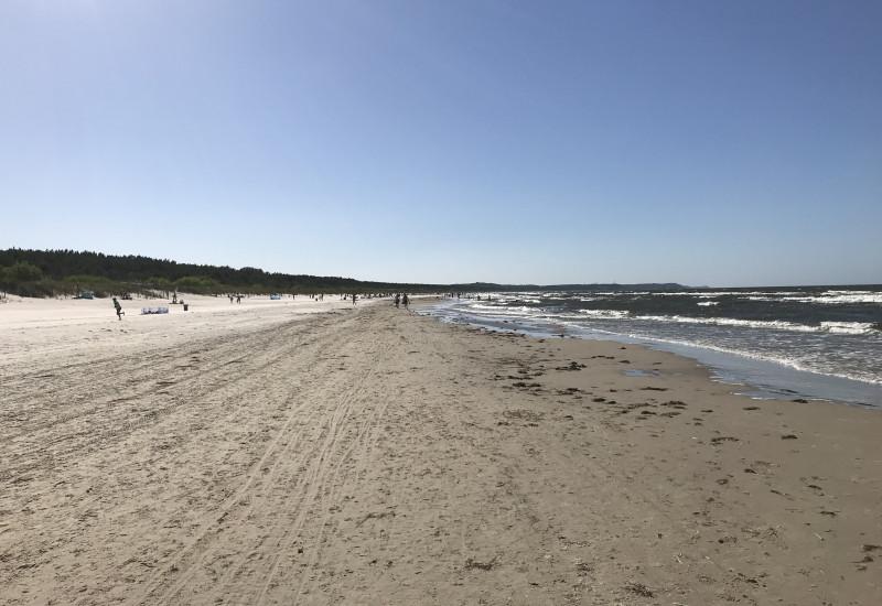 Der Ostseestrand im Vordergrund, im Hintergrund das Meer
