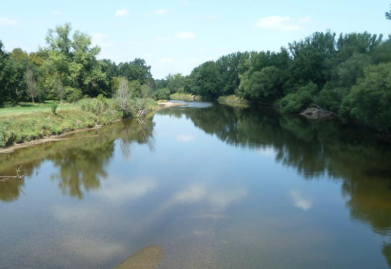 Ein Fluss mit Bäumen