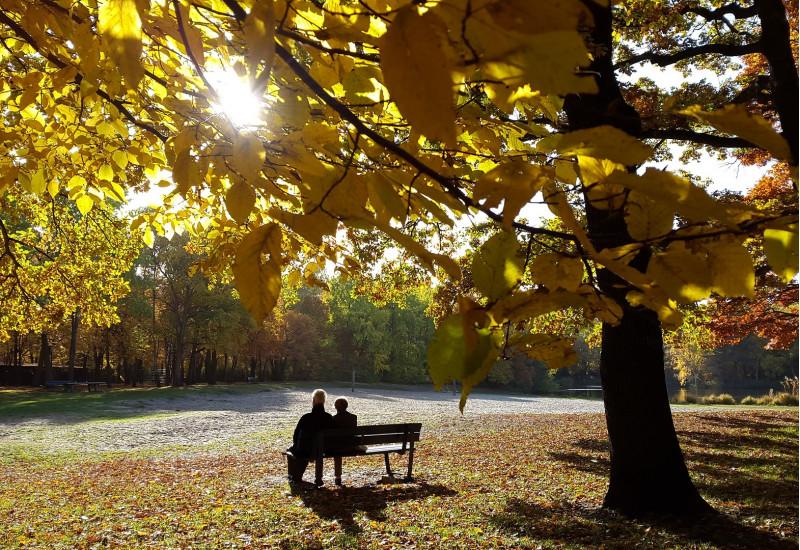 Ein Paar sitzt im Sonnenlicht in einem Park auf einer Bank.