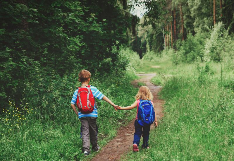 Zwei Kinder wandern im Wald.