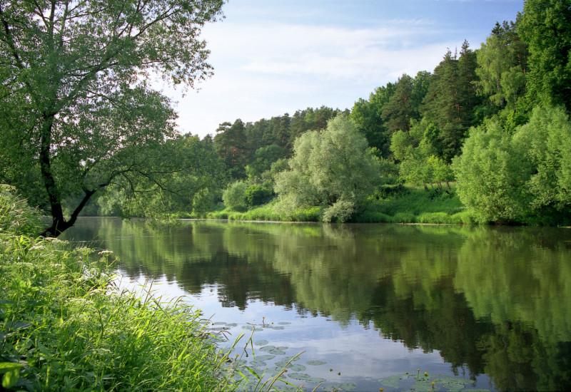 Ein breiter, ruhiger Fluss. Rechts und links viel grüne Natur mit Bäumen.