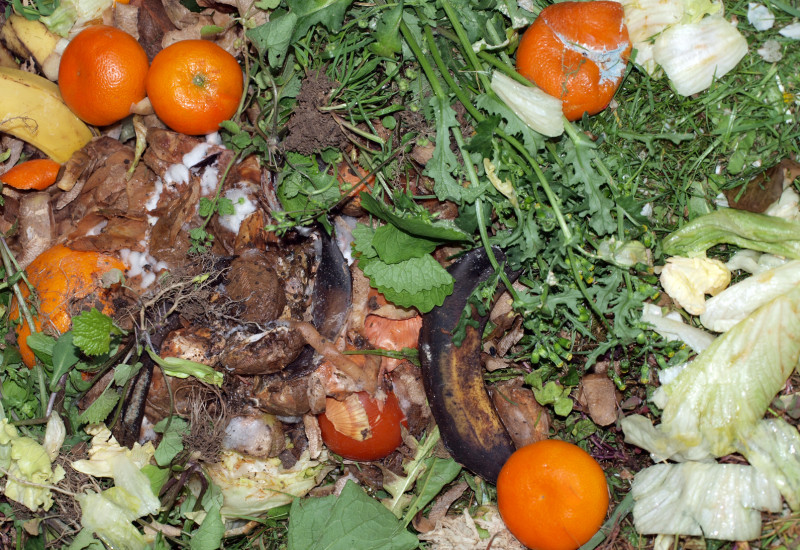 Kompost mit Gemüse- und Obstresten