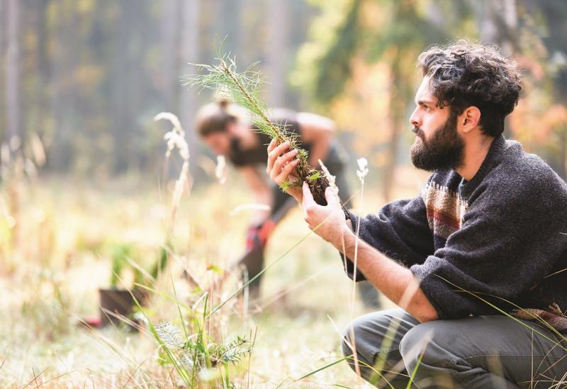 Das Bild zeigt einen auf einer Lichtung knienden jungen Mann, der einen Nadelbaumsetzling in seinen Händen hält und diesen betrachtet. Im Hintergrund sieht man verschwommen einen Mann, der mit einem Spaten einen Baum einpflanzt.