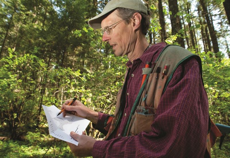 Das Bild zeigt einen Mann in einem Mischwald stehen, der auf einem Papier Aufzeichnungen macht.