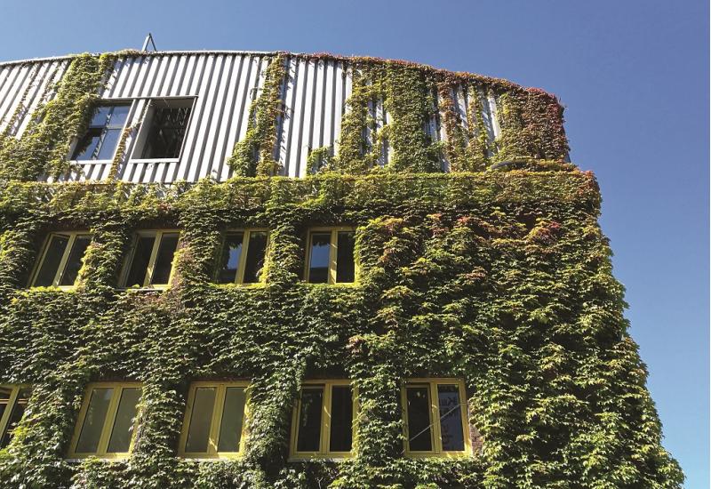 Das Bild zeigt die Metallfassade eines modernen gewerblichen Gebäudes, das nahezu komplett mit einer Kletterpflanze begrünt ist.