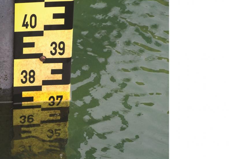 Das Bild zeigt eine Pegelmesslatte in einem ruhigen Gewässer.