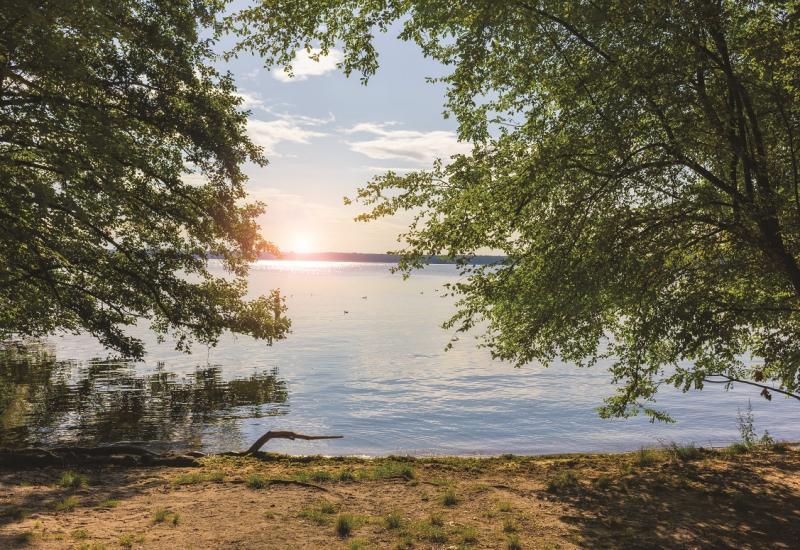 Das Bild lenkt den Blick vom Ufer eines Sees zwischen großen Bäumen hinaus auf die Wasserfläche. Am Hintergrund steht die Sonne knapp über dem Horizont.