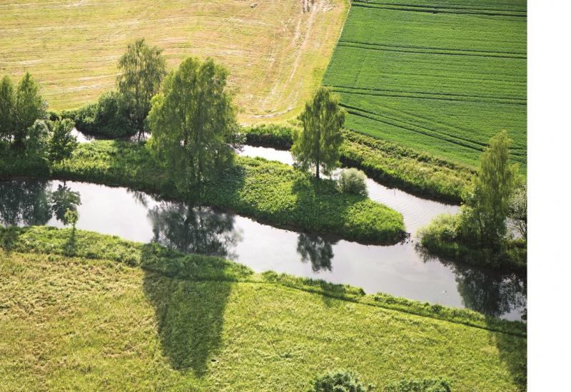 Das Bild zeigt einen schmalen Bach, der durch eine landwirtschaftlich genutzte Fläche fließt. Am Uferrand stehen einzelnen große Bäume und einige Büsche, die Schatten auf die Wasseroberfläche werfen.