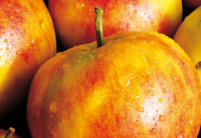 Nahaufnahme der Äpfel