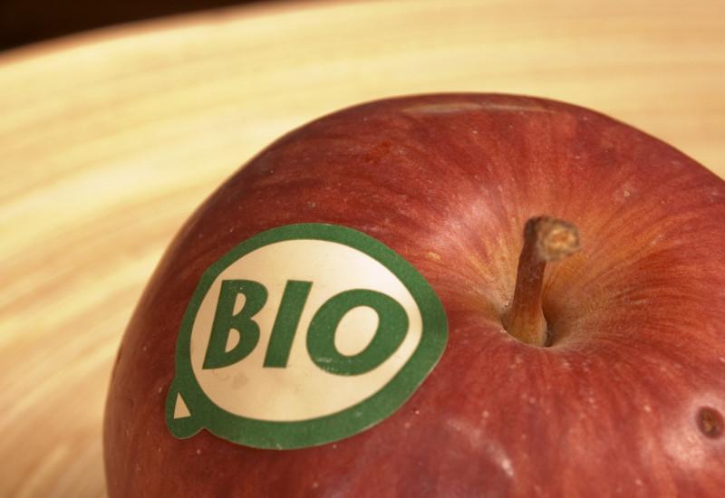 Close-up of an organically grown apple