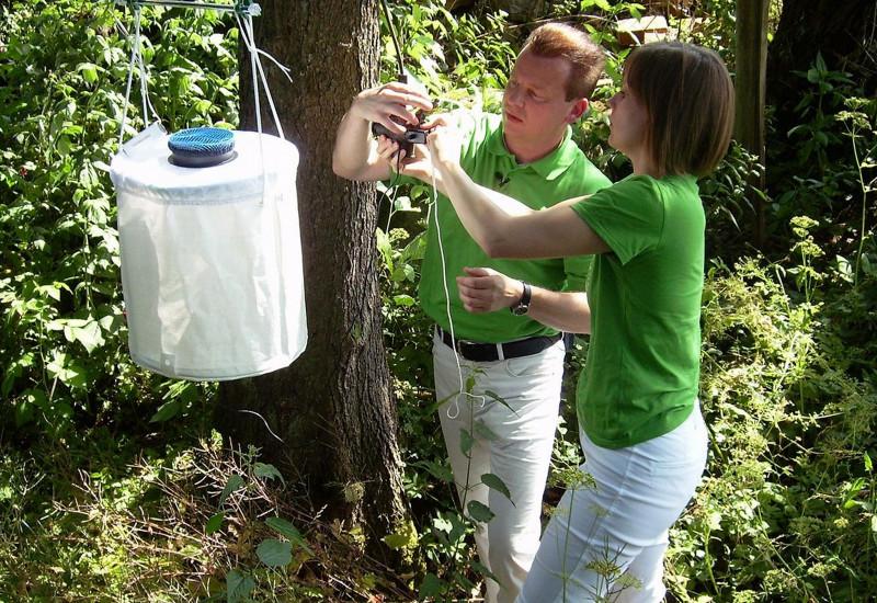 Personen stellen Mückenfalle im Wald auf