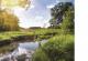Das Bild zeigt einen Bach, der durch eine Wiese fließt. Bäume und Baumgruppen sind im Vorder- und Hintergrund zu sehen.