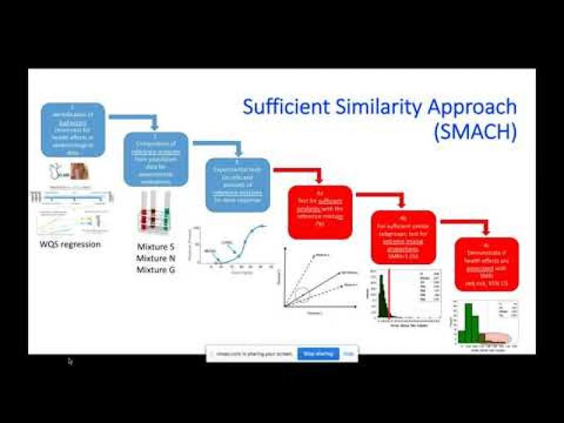HBMC2020: HBM Data for risk assessment of chemical mixtures by Carl-Gustaf Bornehag