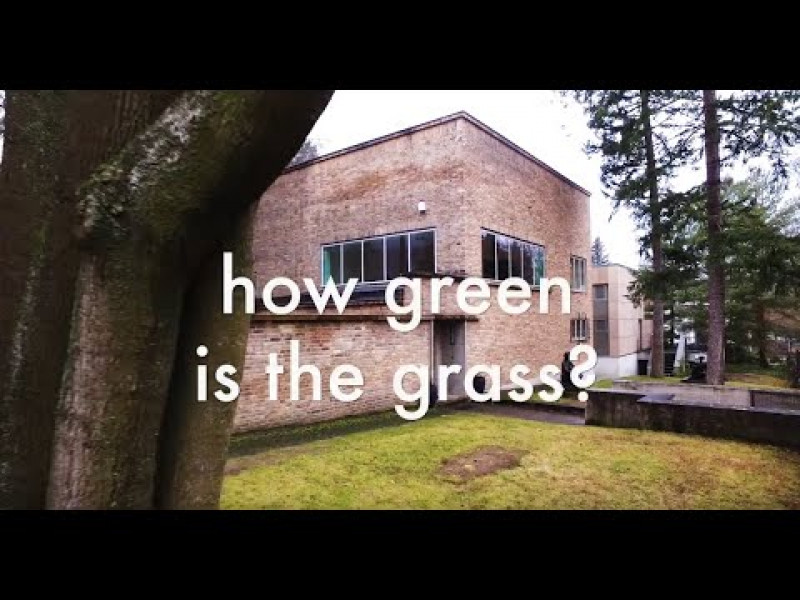 how green is the grass? herman de vries